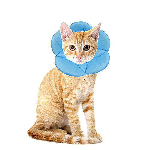 - Pet by AnnaEye Recovery Pet Cone E-Collar for Cats and Small Dogs - Comfortabe Flower Pattern Elizabethan Collar Blue S