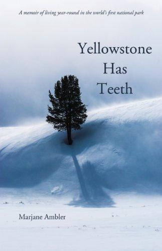 Yellowstone Has Teeth ()
