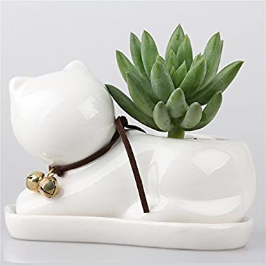 Cream White Small Cub Cat Ceramic Succulent Plant Flower Pot Flowerpot Planter Pots White Porcelain with Tray Bell on the Neck Modern Simple Style Small 4.7inches X 2.95inches X 3.15inches