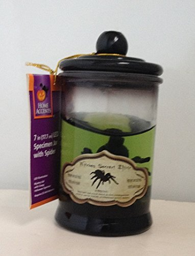 Home Accents Halloween 7-inch LED Specimen Jar With Spider