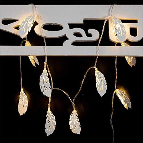 Iulove White Feather Festival Decoration Light 10 LED