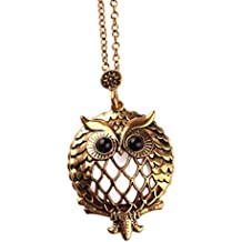Swyss Magnifier Pendant Vintage Necklace Glass Butterfly Large Eye Owl Pendant Chic Charm Necklace 2018 New