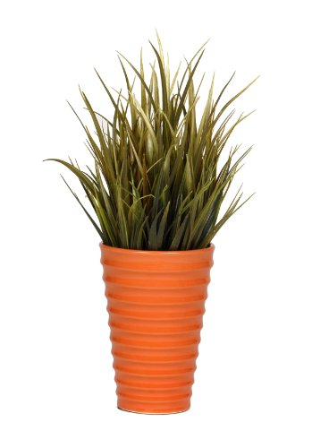 House of Silk Flowers Artificial Olive Vanilla Grass in Orange Ceramic ()