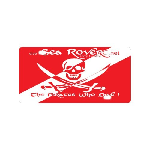 """Dive Flag License Plate with Cheap Sale-12"""" X 6"""" inches"""