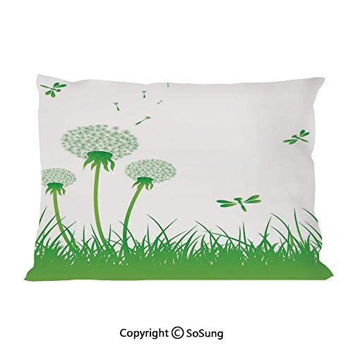 (Dragonfly Bed Pillow Case/Shams Set of 2,Ecology Background with Dandelions Greenland Grass Habitat Nature Print Decorative Queen Size Without Insert (2 Pack Pillowcase 30
