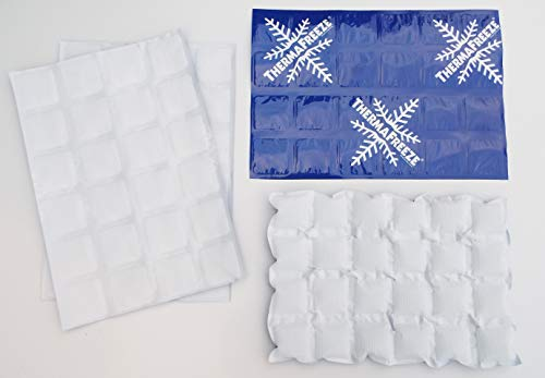 Reusable Ice Pack Sheets by Insta Freeze for Coolers and Shipping Stays Cold for 48 Hours