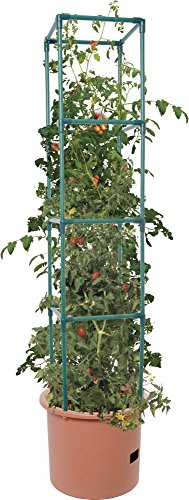 Hydrofarm GCTB2 Heavy Duty Tomato Barrel with 4' Tower, Green (Tomatoes Patio Home Depot)