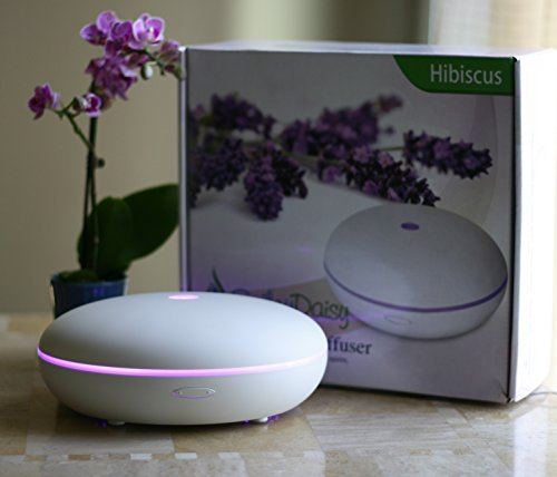 Smiley Daisy Essential Oil Diffuser Mist Humidifier