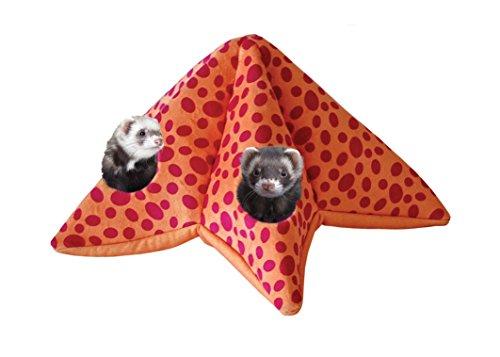 Marshall Starfish Toy