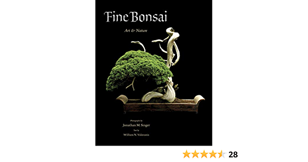 Amazon Com Fine Bonsai Art Nature 9780789211125 William N Valavanis Jonathan M Singer Books