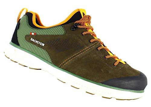 Dachstein Lite Walker DDS, Scarpe da Nordic Walking Uomo Marrone (Dark Oak/Cypress)