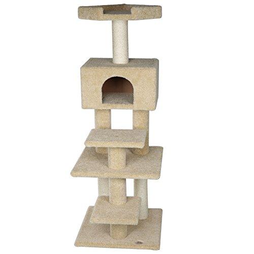 Carpeted Cat - 3