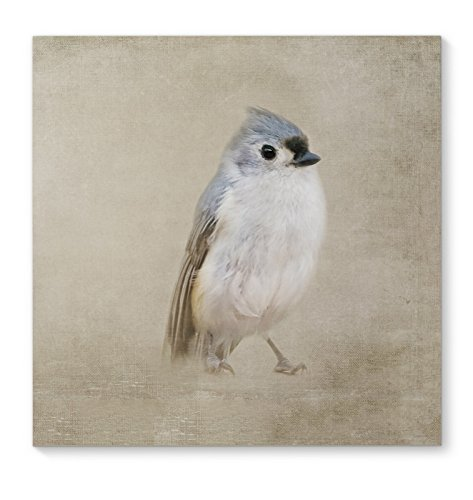 KAVKA DESIGNS One Little Bird Canvas Art, (Blue/Grey/Ivory) - HEARTLAND Collection, Size: 12x12x1.5 - (TELAVC1212GW12S) by KAVKA DESIGNS