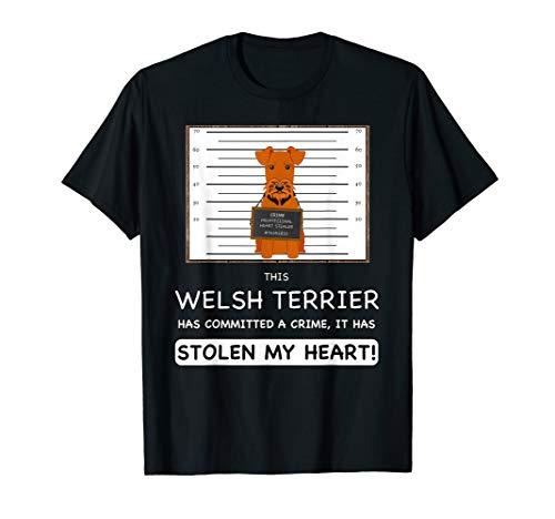 (Funny Welsh Terrier T-Shirt)