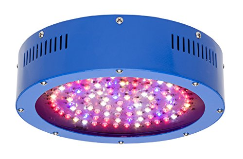 BloomBoss UFO LED Grow Light Featuring TrueSun Smart Spectrum Technology