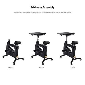Flexispot Standing Desk Exercise Bike Home Office Furniture Desk