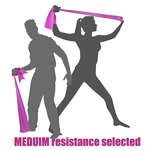 MEDIUM TENSION EXERCISE RESISTANCE BANDS - Home Gym Fitness Equipment. Ideal for Physical Therapy, Strength Workout, Theraband, Pilates, Beachbody, Yoga, Mat, Rehab, Seated | LATEX-FREE | 6.5ft