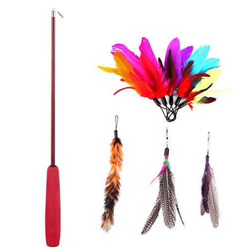 8-Pcs-Assorted-Feather-Cat-Toy-Etrech-Retractable-Wand-Rod-With-8-Pcs-Feather-Teaser-Cat-Catcher-Perfect-Teaser-for-Exercising-Kitten-or-Cat