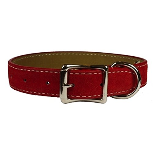 "Auburn Leathercrafters Saratoga Suede Dog Collars-Red-3/8"" x 8"""