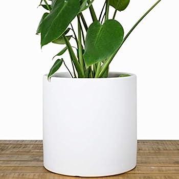 Amazoncom Nodpot 10 White Planter Mid Century Modern Indoor