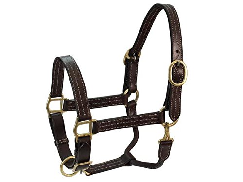 Derby Originals Havana Triple Stitch Leather Adjustable Horse Halter Full Horse & Cob Size (Havana, Full Horse)