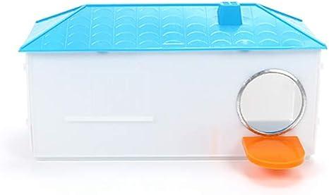 CWZJ Pequeña Jaula de plástico de la casa de cría de la Caja Nido para pájaro Loro Cockatiel pájaro pequeño,Blue: Amazon.es: Deportes y aire libre
