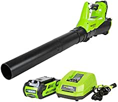 Greenworks 40V 115 MPH - 430 CFM Cordless Brushless Blower, 2.0 AH Battery Included...