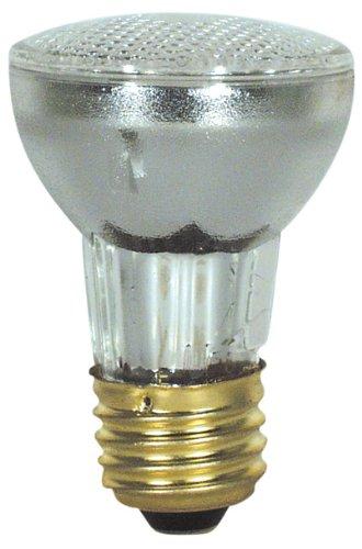 100 Watt R20 Flood Light Bulbs - 2