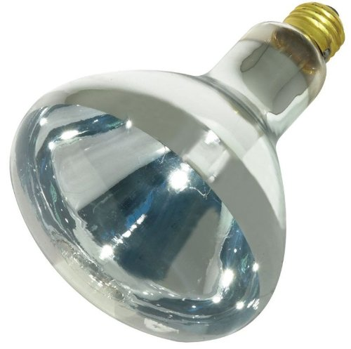 Satco 250-Watt BR40 Incandescent CLEAR Heat Lamp Light Bulb (12 Pack)