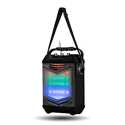 Acoustic Audio TG65GS Portable Bluetooth Speaker with LED Display Rechargeable Battery and Mic