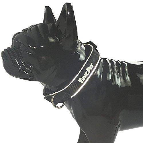 Reflective Padded Neoprene Collar Sport