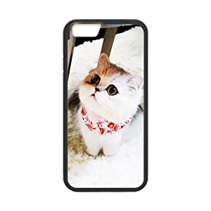 Lovely little white cat Case for Iphone 6 wangjiang maoyi