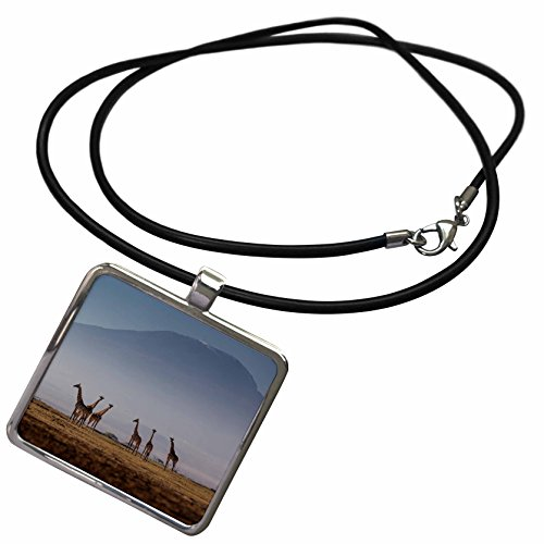 - 3dRose Danita Delimont - Giraffes - Masai Giraffes and Mount Kilimanjaro, Amboseli National Park, Kenya - Necklace with Rectangle Pendant (ncl_276450_1)