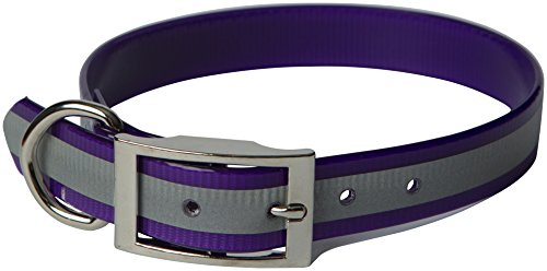 Sunglo Reflective Collar (OmniPet Sunglo Reflective Regular Dog Collar, 1 x 21, Purple)