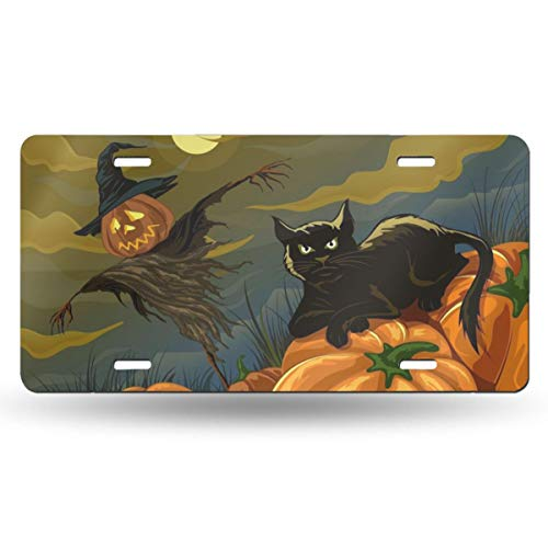 XRUUIN Halloween Black Cat Scarecrow Pumpkin License Plate Frame Customize Your Name Your State Personality Car License, Metal License Plate 50 States(6x12 Inch)