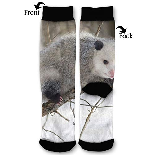 EKUIOP Socks Virginia Opossum Funny Fashion Novelty Advanced Moisture Wicking Sock for Man Women