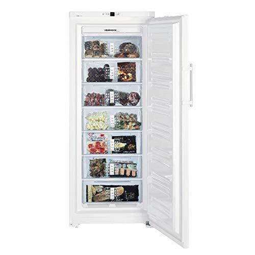Congelador armario Liebherr - GN 3613 (calidad (Certificado ...