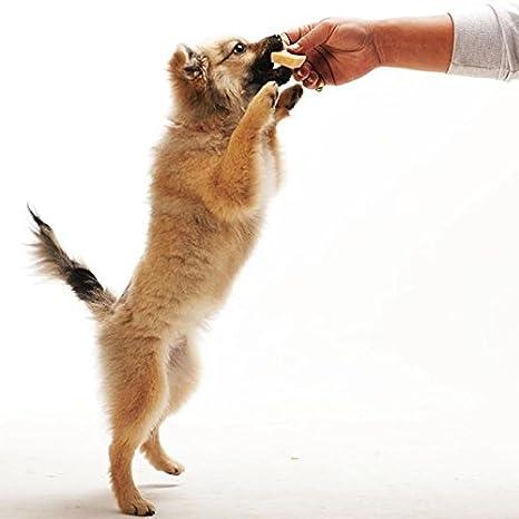 Amazon.com: 100% Natural Yak Masticar, Himal perro Treat ...