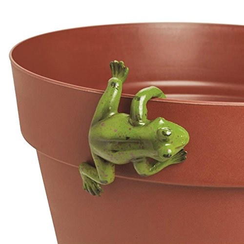 Frog Pot Hanger - Dazzling Deals Frog Pot Hanger