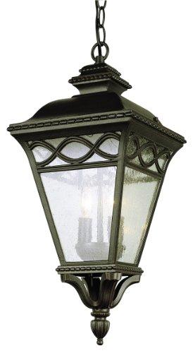 Estate Outdoor Hanging Lantern - Trans Globe Lighting 50516 RT Outdoor Candlewood 21
