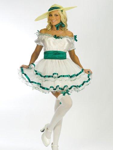 [Sexy Southern Belle Costume - Small/Medium - Dress Size 2-8] (Southern Belle Costumes Adult)