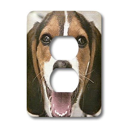 3dRose LLC lsp_48739_6 Beagle Face Close-Up and Textured 2 Plug Outlet - Beagle Face