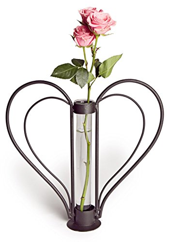 Danya B. QB106 Decorative Sweetheart Iron and Clear Glass Flower Bud Vase in Heart-Shaped Design