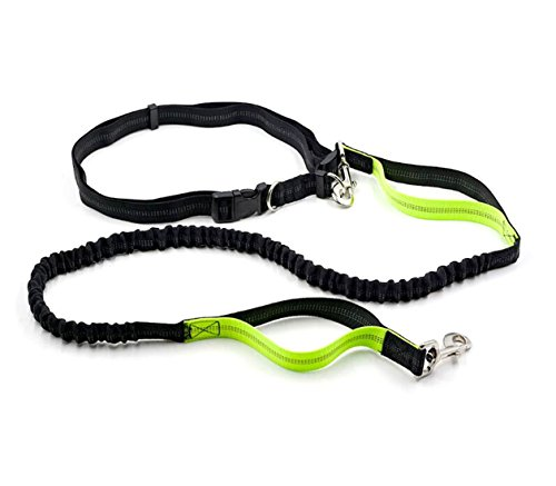 Lifepul Hands Free Waist Dog Leash- Pet Dog Waist Leash Belt, Dual Handle Reflective Running Leash, Adjustable for Walking, Running, Biking and Hiking
