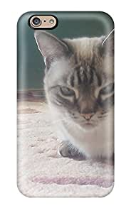 6066547K72309376 For Iphone Protective Case, High Quality For Iphone 6 Munchkin Cats Skin Case Cover