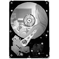 Seagate SV35.5 Series SATA 1.0 TB Internal Hard Drive (ST31000525SV)