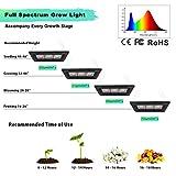 450W Waterproof Led Grow Light, Relassy Sunlike