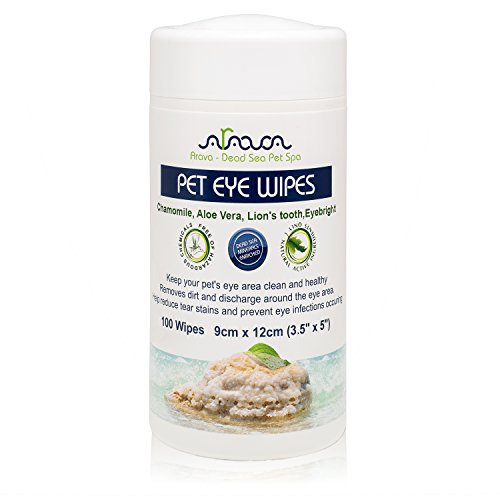 All Animal Eye Care - 8