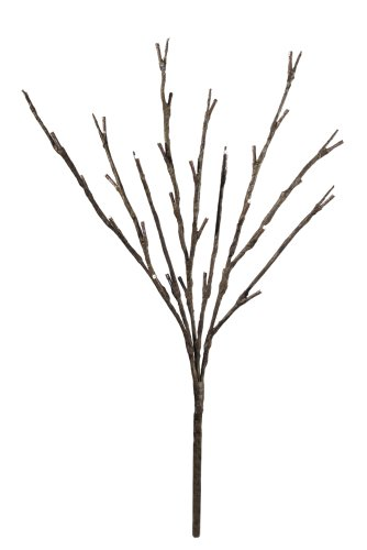 Floral Lights Lighted Willow Branch with 30 bulbs, 20 inches