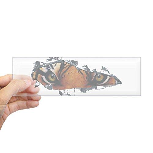 CafePress - Tiger Eyes Sticker (Bumper) - 10